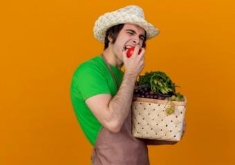 Антиоксидант у помідорах запобігає раку простати