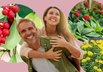 Адаптогени – фітопрепарати (БАДи), які допомагають боротися зі стресом
