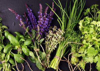Базилік, петрушка, материнка, чебрець і м'ята. Чим корисні ці пряні трави?
