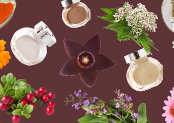 Чому не варто купувати БАДи на основі рослинних екстрактів?