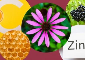 5 найкращих природних імуностимуляторів