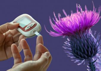 Цукровий діабет 2 типу. Які трави нормалізують рівень цукру в крові?